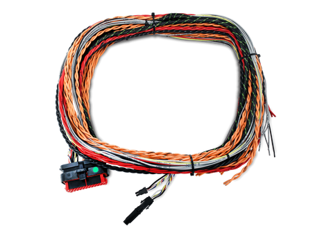 FTSPARK-4 Harness