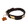 European Herding Brass Dog Collar Large