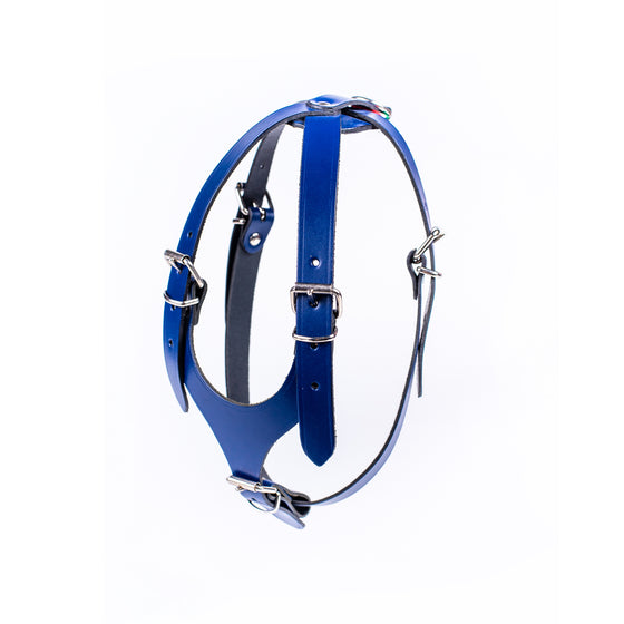 European Leather  Harness - Small/Medium Breed