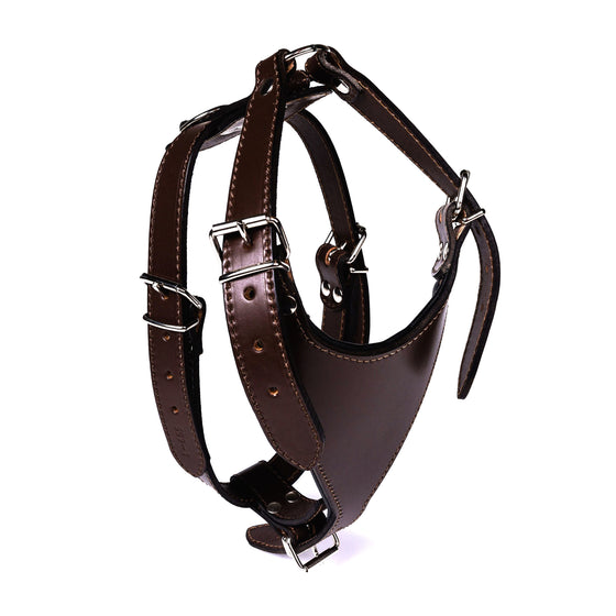 Carlino Leather Harness