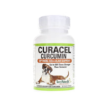 Terry Naturally - Curacel Curcumin