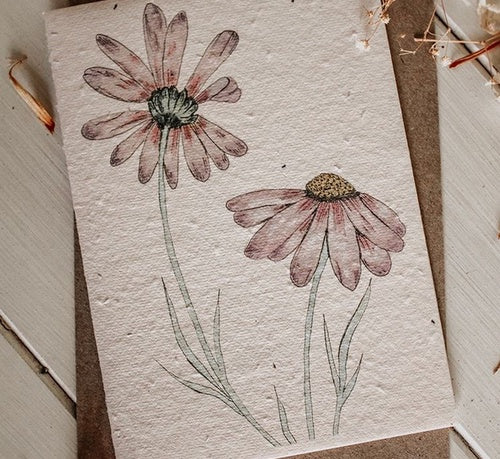 Plantable Card-Daisies