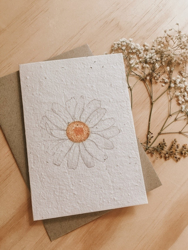 Plantable Card-Daisy Daze