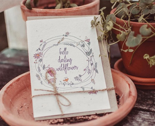 Plantable Card-Hello Darling Wildflower