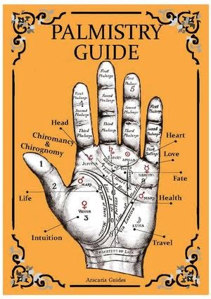 Palmistry Guide