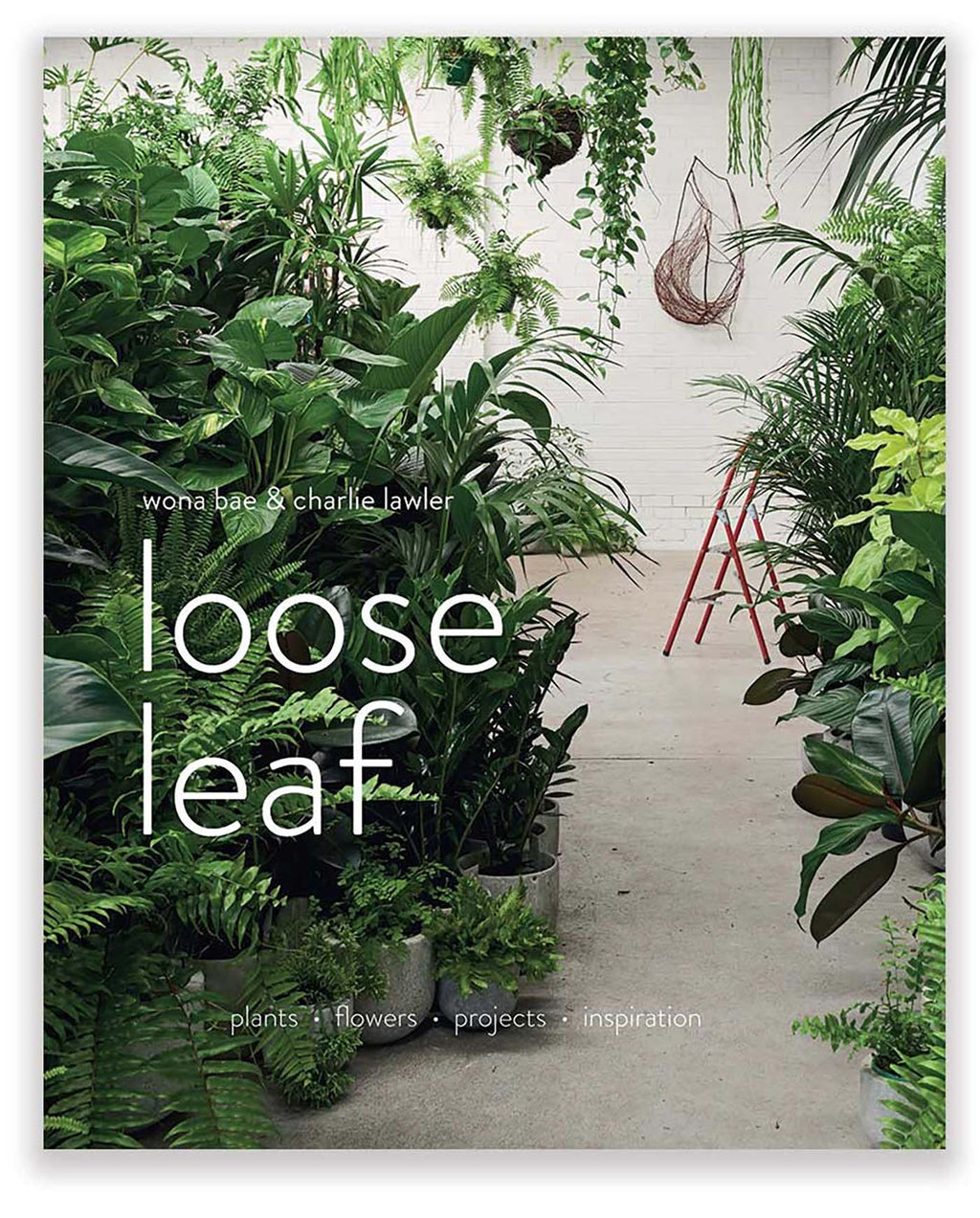 Loose Leaf : Flowers and Plants