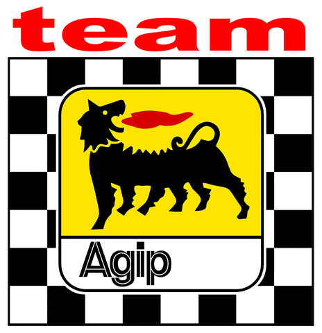 LOGO AGIP TEAM AB008