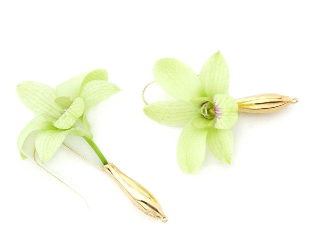 Polished 14 KT Gold Fleurings Vase Earrings that hold water and keep flowers lasting. Earrings pictured with Fresh Green Orchids.