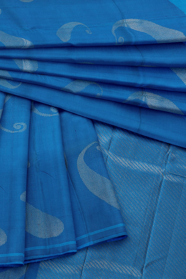 Blue saree with Blue Border