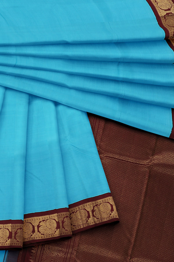 Blue Saree with Brown and Gold Border