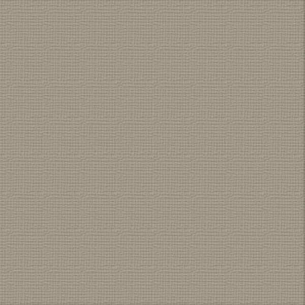 12x12 Cardstock - Silver Star (216gsm)