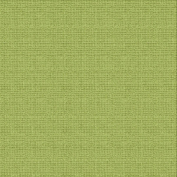 12x12 Cardstock - Olive Grove (216gsm)