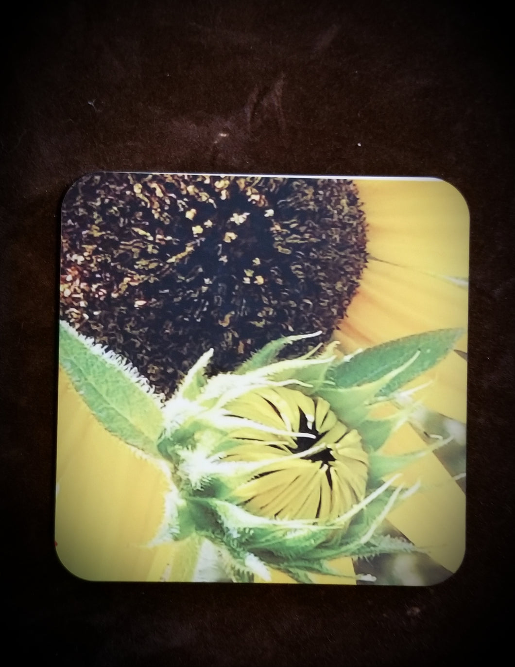 Double Sunflower Drink Coaster