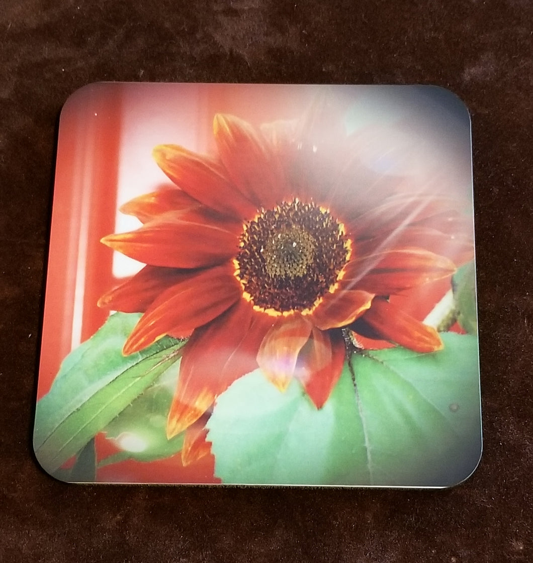 Red Sunflower Drink Coasters