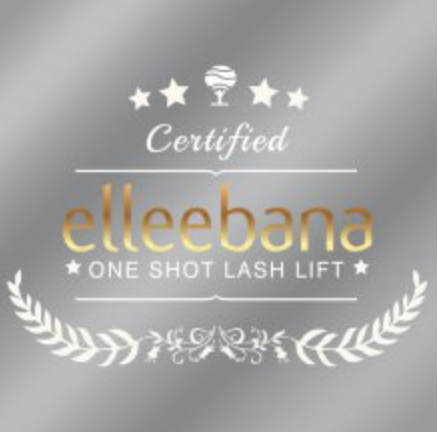Elleebana  12 x 12 window branch decal