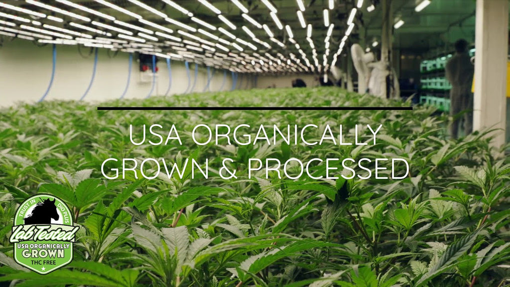 Organically Grown & Processed in Colorado