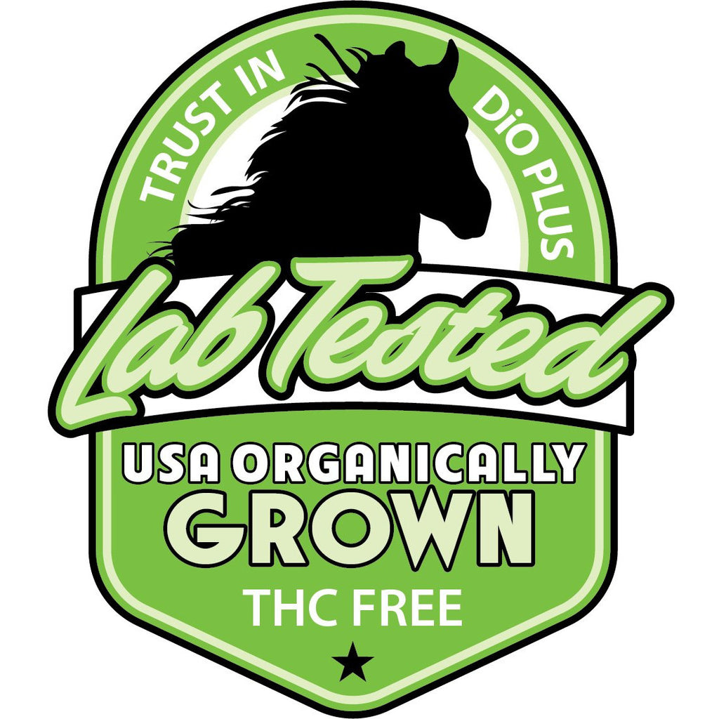 Draw It Out PLUS GEL Horse Liniment 32oz with CBD