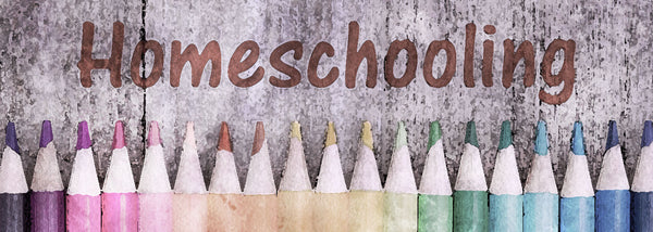 Tips for Homeschooling Kindergarten You Can't Do Without