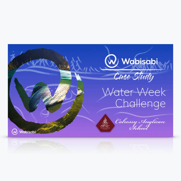 Case Study: Water Week Challenge—Calrossy School
