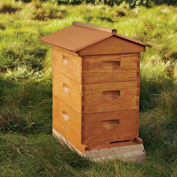 Residential Hive Service