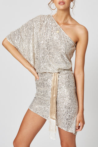Winona Stella One Shoulder Dress Silver