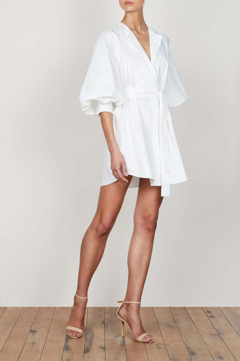 ShonaJoy Grant Balloon Sleeve Shirt Dress