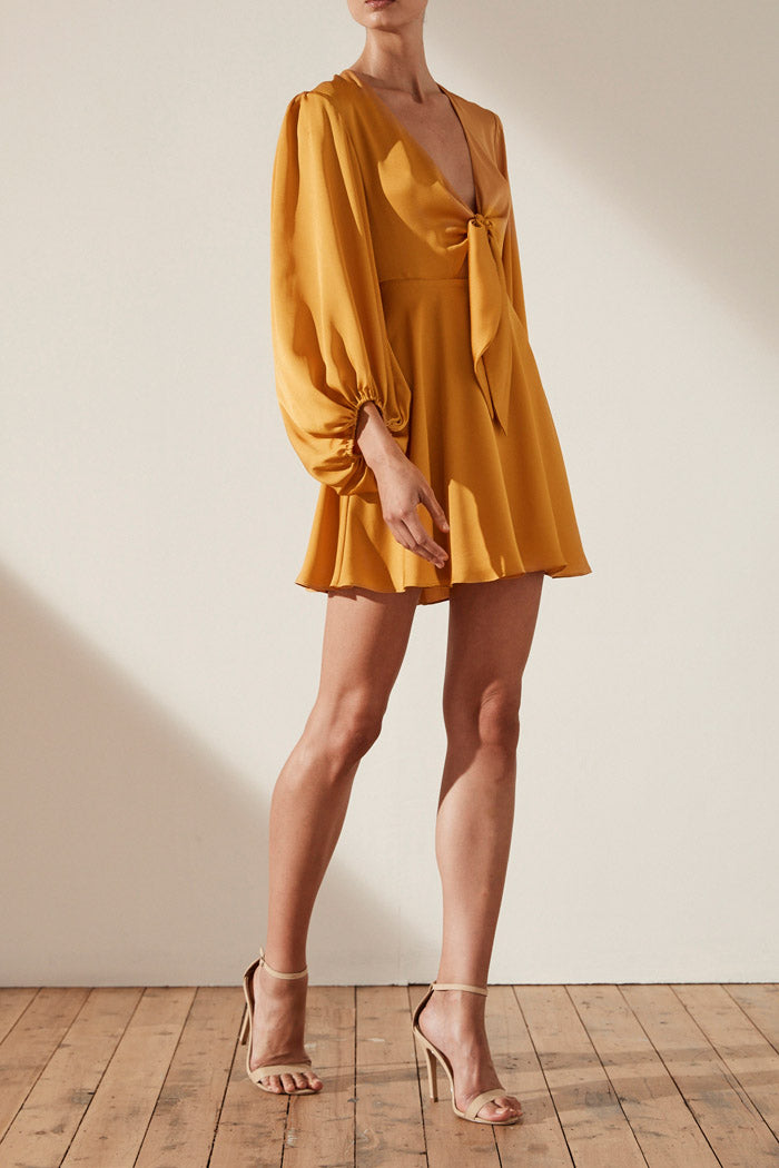 Shona Joy Oro Tie Front Mini Dress