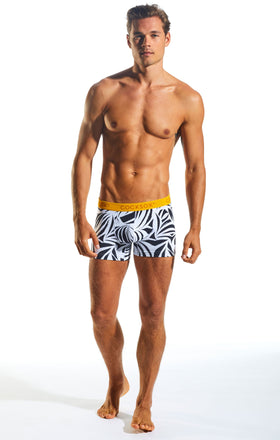 Cocksox CX12WD Underwear Boxer in Zebra full body image