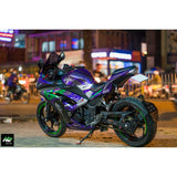 Kawasaki Ninja 300 Stickers Kit - 006 - H2 Stickers - Worldwide