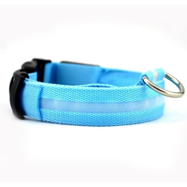 LED Glow In The Dark Dog Safety Collar - blue / S