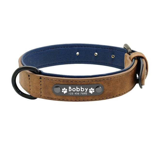 Personalized Leather Pin Buckle Dog Collar - Coffee / S
