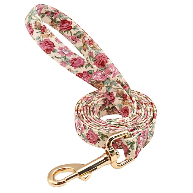 Matching Nylon Dog Leash with Gold Clasp