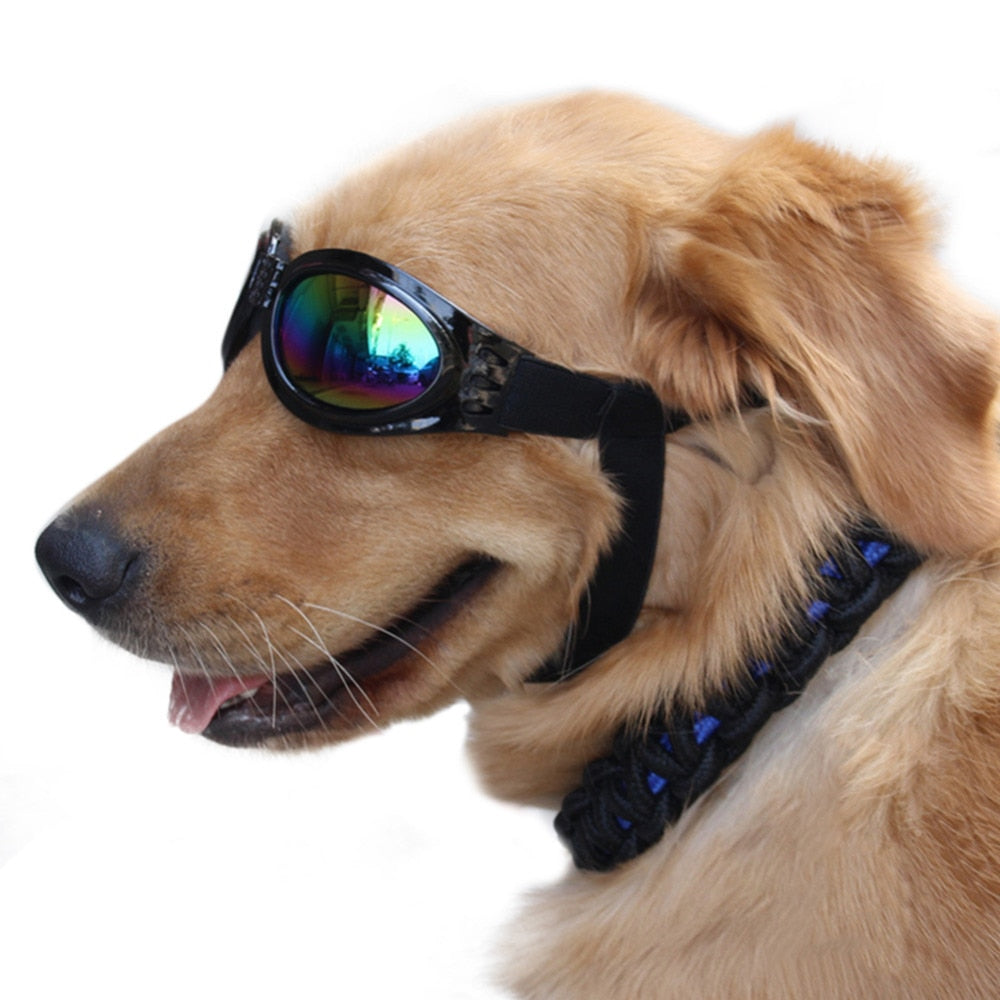 Dog UV Protection Sunglasses With Strap