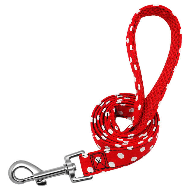 Matching Nylon Polka Dot Leash