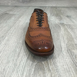 NIB $125 ROCKPORT Men's Style Purpose Perforated Wingtip Oxford, Sz. 12M