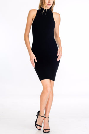 Larissa Ribbed Mock Neck Dress