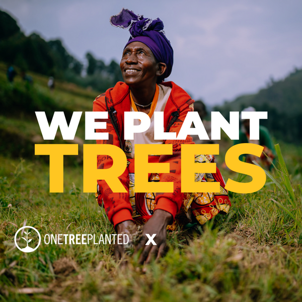 We Are Kynd and One Tree Planted will plant 1 tree for every product sold
