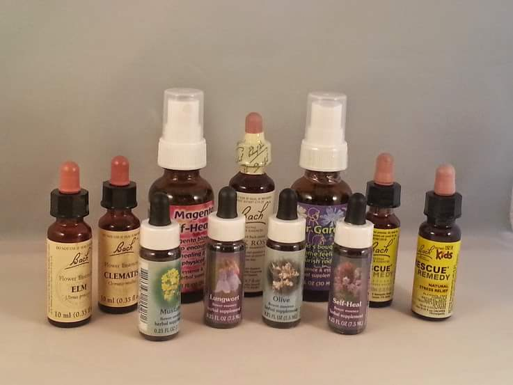 Flower and Gemstone Essence Consult Session
