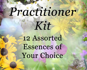 Practitioner Kit - 12 Flower & Crystal Essences of your choice