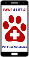 Access our Comprehensive First Aid App