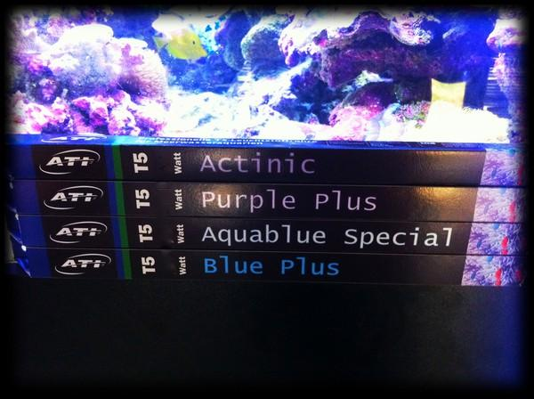 ATI T5 Aquablue Special