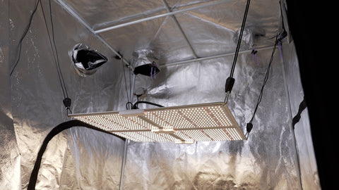 Spider Farmer SF4000 Watts and Coverage