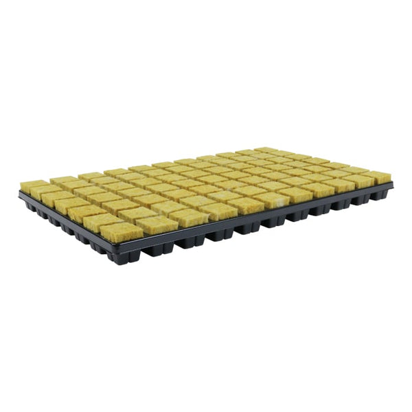 Cultilene 35 x 35 x 40mm Square 77 Cell Tray (Case of 18 trays)