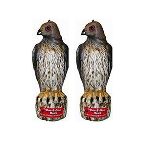Bird B Gone Hawk - 2 Pack