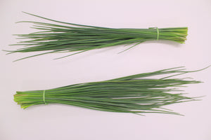 Chives, Thick leaf CN CHI 5854