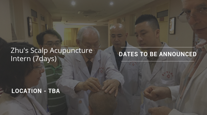 Zhu's Scalp Acupuncture Intern - 7days