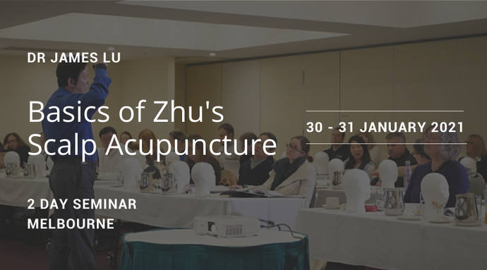 Basics of Zhu's Scalp Acupuncture 2021