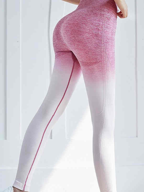 Seamless Quick-Drying Leggings