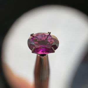 Royalty Gem (Purple Pyrope-Almandine Garnet)