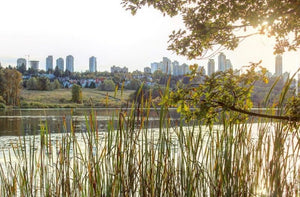 Wandering In Beauty Of Burnaby